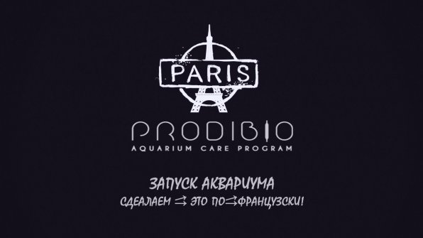 Запуск аквариума на Prodibio