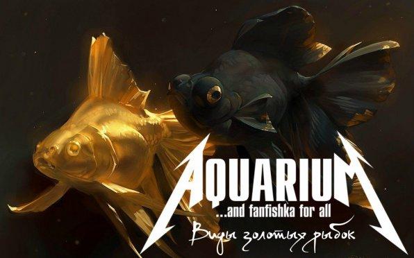 Породы золотых рыбок