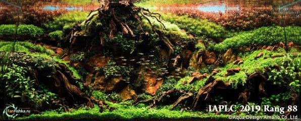 Аквариум травник