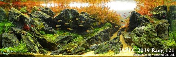 Аквариумс растениями
