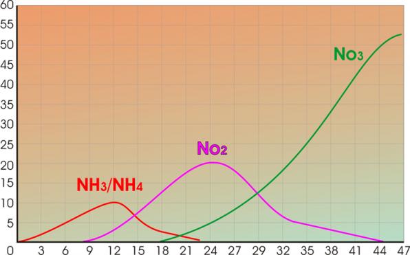 График становления азотного цикла в аквариуме после запуска