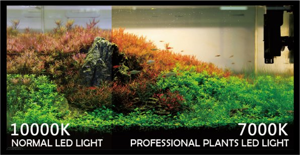 Обзор светильников Ista