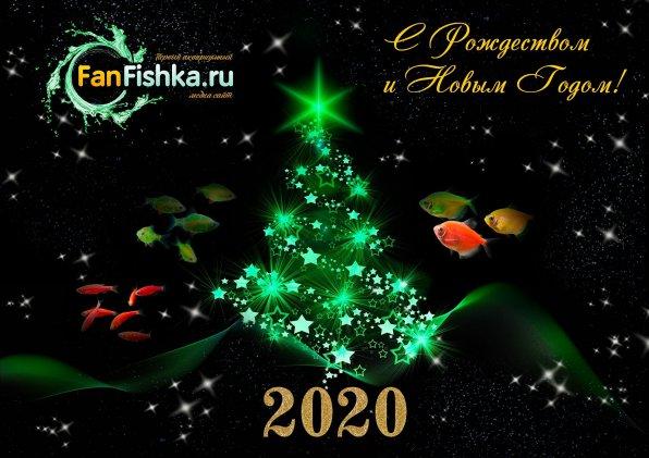 С наступающим новым годом, аквариумисты!