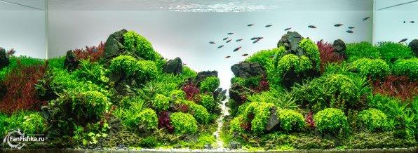 Акваскейп: 2isles - 2острова