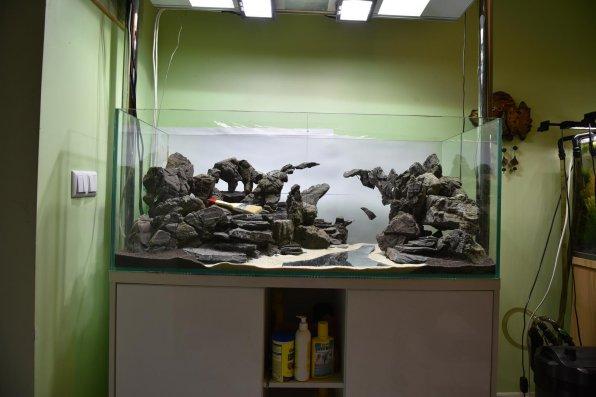 Путь акваскейпера: от идеи до хардскейпа. Эпизод 1
