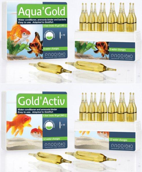 Виды и породы золотых рыбок