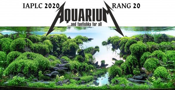 IAPLC 2020 WORD RAND 20