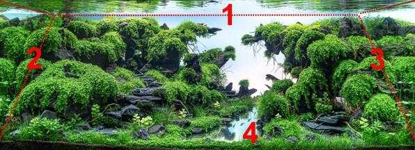 Путь акваскейпера: от посадки до фотки. Эпизод 2