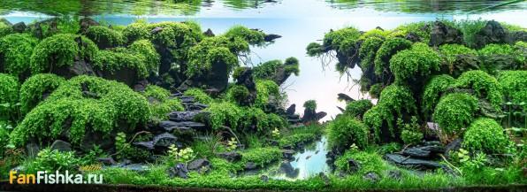 Акваскейперские фишечки: фиксация тяжелых декораций в аквариуме