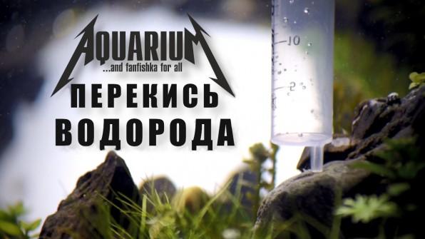 Перекись водорода в аквариуме видео-обзор