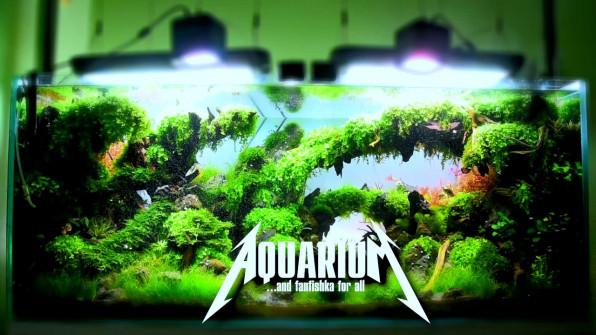 Недорогой и профессиональный светильник для аквариума