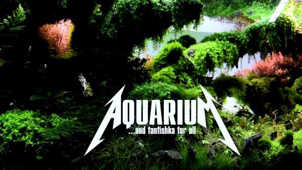 Стрижка акваскейперского аквариума видео-обзор
