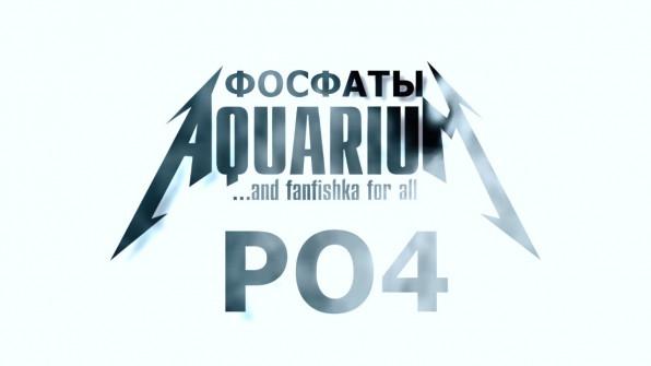 Фосфаты PO4 в аквариуме виедо-обзор