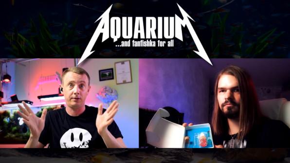 ЛайFF: об аквариумных тестах