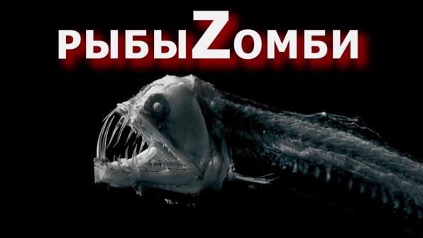 Рыбы зомби: смерть - это только начало