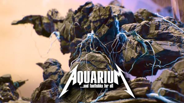 Дизайн аквариума: работа с камнем и грунтом
